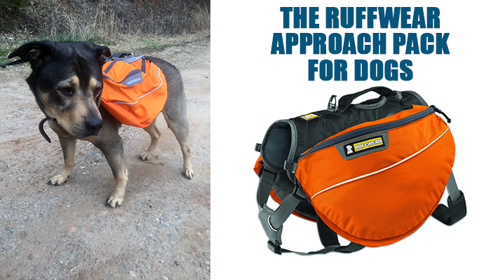 The Ruffwear Approach Pack for Dogs
