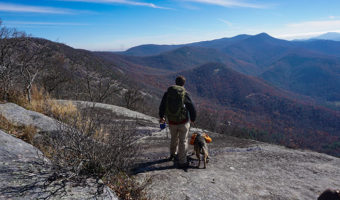 Dog Leash Safety Hiking