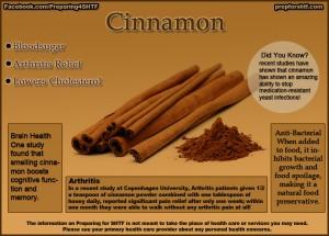 Cinnamon Benefits Infographic