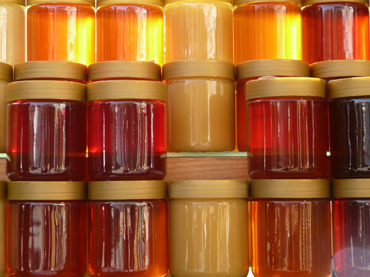 Using Honey as a Topical Antibiotic