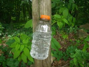 Paracord Bottle Holder