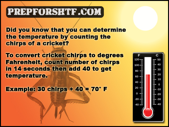 Cricket Chirps Nature's Thermometer Formula