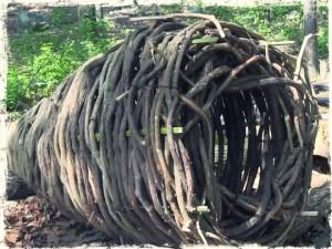 Primitive fish basket trap