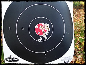 Gamo Target Shooting