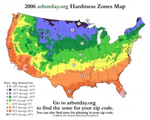 hardiness temperatura zones