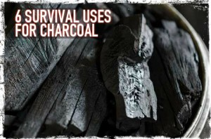 Survival uses for charcoal