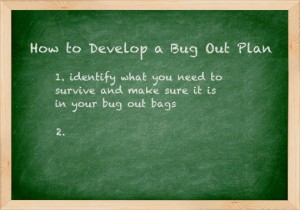Bug out plan