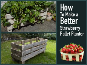 Pallet Strawberry Planter