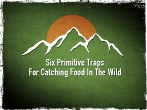 Six Primitive Traps