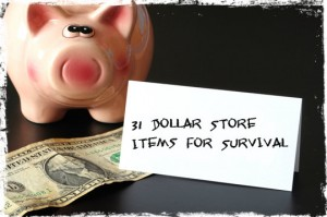Dollar store survival items