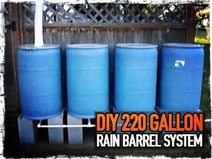 220 Galon Rain Barrel System