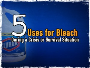 Bleach survival uses