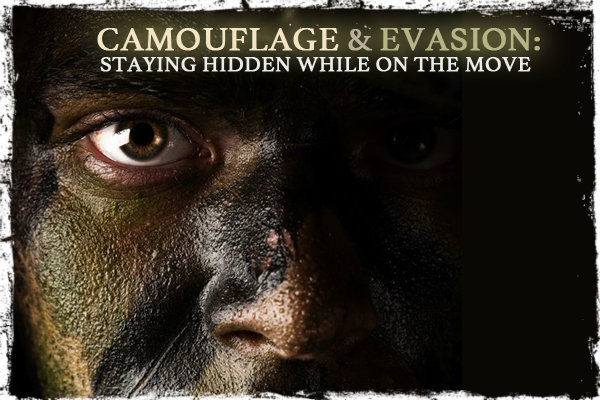 Camouflage and Evasion