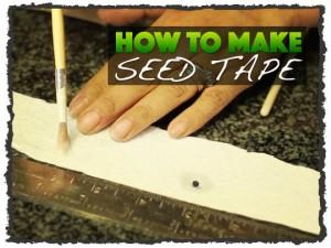 DIY Seed Tape