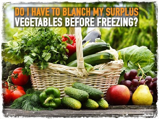 Do I have To Blanch My Surplus Vegetables before Freezing?