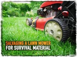 Lawn Mower Survival
