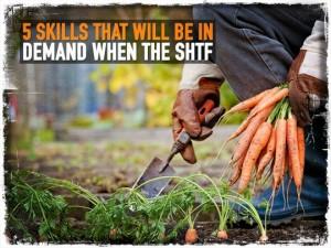 SHTF Skills