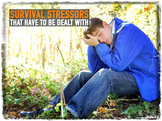 Survival Stressors That Have To Be Dealt With