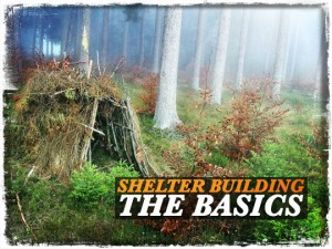 Shelter Building Basics