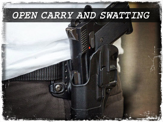 Open Carry and Swatting