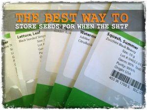 Seed Storage SHTF