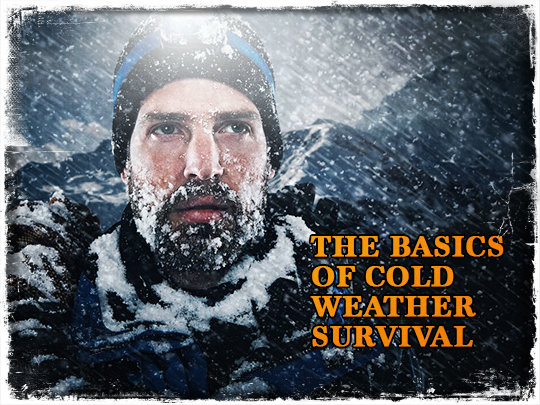The Basics of Cold Weather Survival