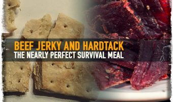 Beef Jerky and Hardtack The Nearly Perfect Survival Meal