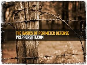 Perimeter Defense Basics