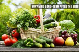 Surviving Long Term SHTF