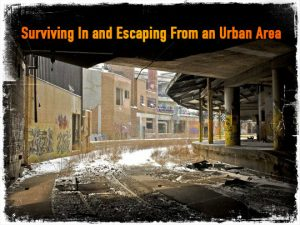 Surviving Urban Area