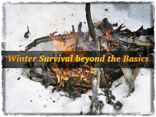 Winter Survival beyond the Basics