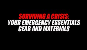 Surviving a Crisis