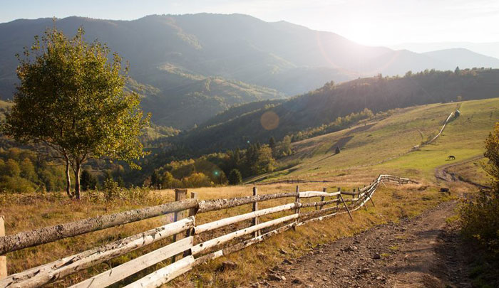 5 Concerns When Purchasing a Homesteading Property